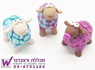 סדנא כבשים מפימו - מכללת ורצברגר